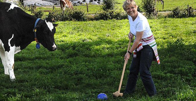 Die Kühe sind die besten Zuschauer